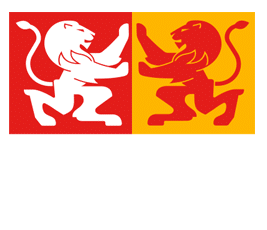 Campus Virtual Los Leones